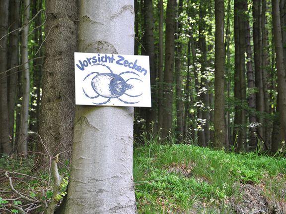 Warnschild: Zecken im Wald