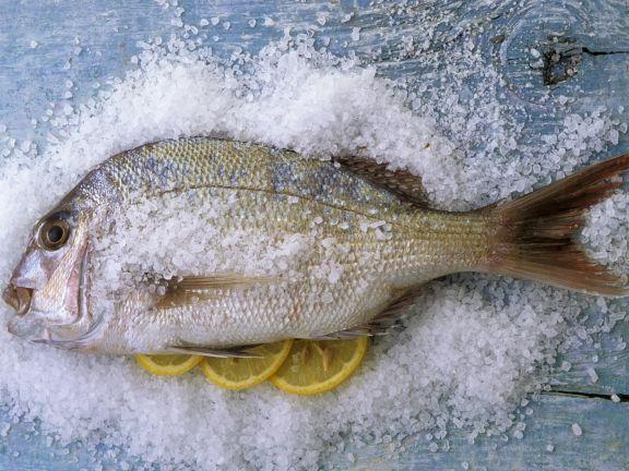 Zitronen-Brasse mit Meersalz