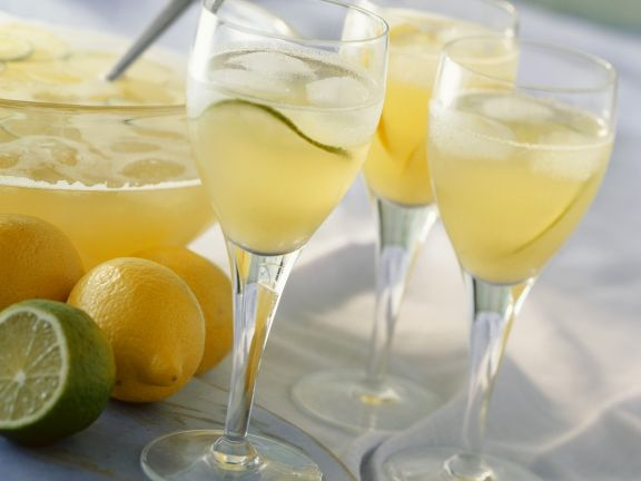 Zitronen-Limetten-Bowle