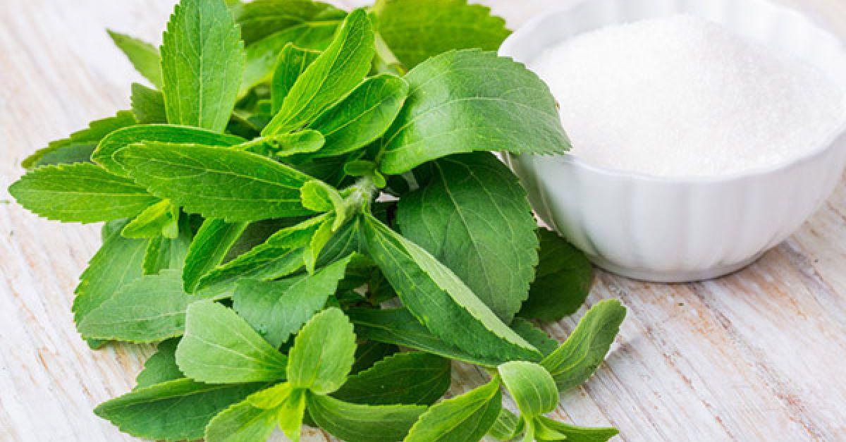 backen mit stevia eat smarter. Black Bedroom Furniture Sets. Home Design Ideas