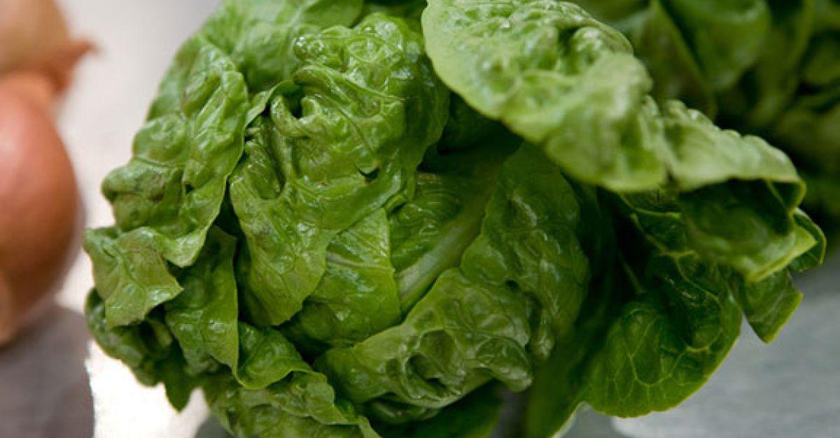 wie gesund ist salat aus der tute beliebte eezepte f r. Black Bedroom Furniture Sets. Home Design Ideas