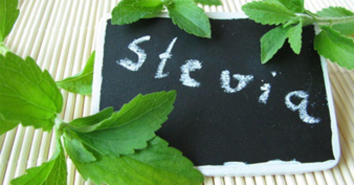 stevia ab sofort als zuckerersatz erlaubt eat smarter. Black Bedroom Furniture Sets. Home Design Ideas