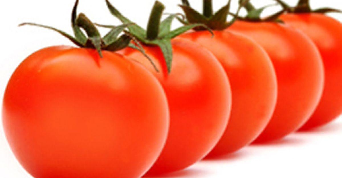 sind tomaten obst