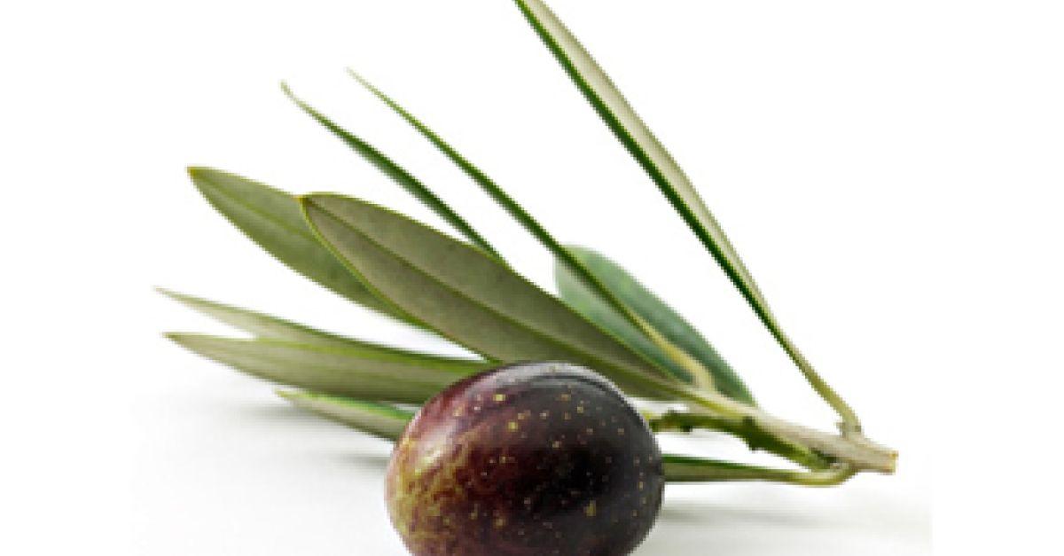 oliven eat smarter. Black Bedroom Furniture Sets. Home Design Ideas