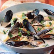 Kochbuch für Muschelsuppe-Rezepte