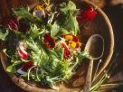 Blattsalat mit Blüten und Schnittlauchdressing Rezept