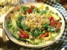 Bunter Blattsalat mit Avocado, Tomate und Sprossen Rezept