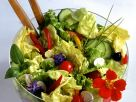 Bunter Blattsalat mit Essblüten Rezept