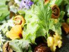 Bunter Salat mit Champignons und Maroni Rezept