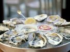 Eis-Austern mit Dip Rezept