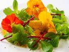 Feldsalat mit Essblüten Rezept