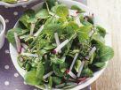 Feldsalat mit Kräutern Rezept