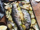 Forelle auf Kartoffeln im Ofen gebacken Rezept