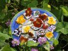 Frischkäse-Brothäppchen mit Essblüten Rezept