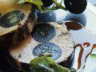 Gänseleberpastete mit Trauben Rezept