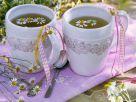 Kamillenblüten-Tee Rezept