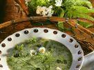 Kräutersuppe Frühlingsblümchen Rezept