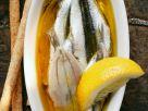 Marinierte Sardinen mit Zitrone Rezept