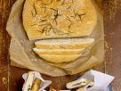 Rosmarin-Brot mit Mozzarella Rezept