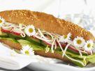 Sesamstange mit Gurken, Radieschen und Sprossen belegt Rezept