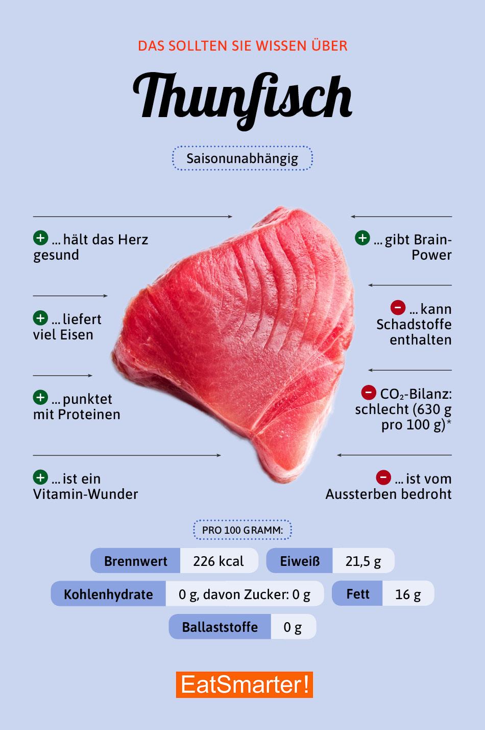 Infografik Thunfisch