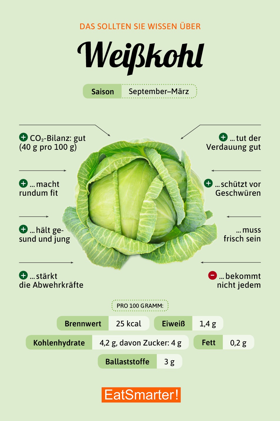 Infografik Weißkohl