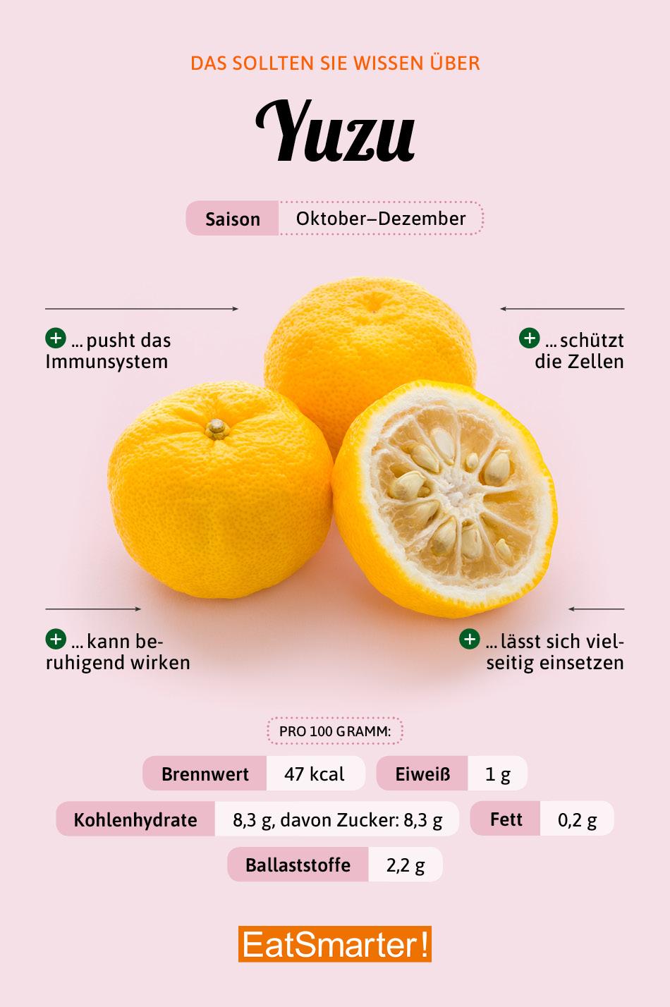 Yuzu Infografik